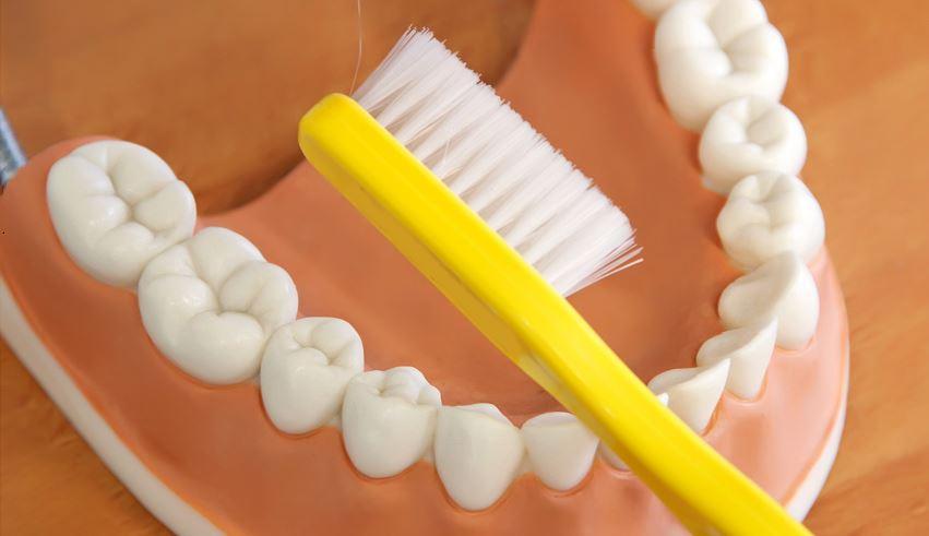 profilaktyka szczotkowanie zębów